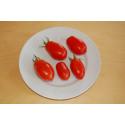 Tomat Quadro (Lycopersicon lycopersicum)