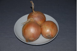 Løg (Onion Yellow Sweet)