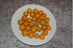 Ananaskirsebær (Physalis peruviana)