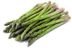 Asparges Connovers Colossal (Asparagus officialis)