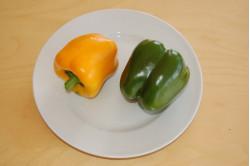 Peberfrugt - gul (capsicum annuum)