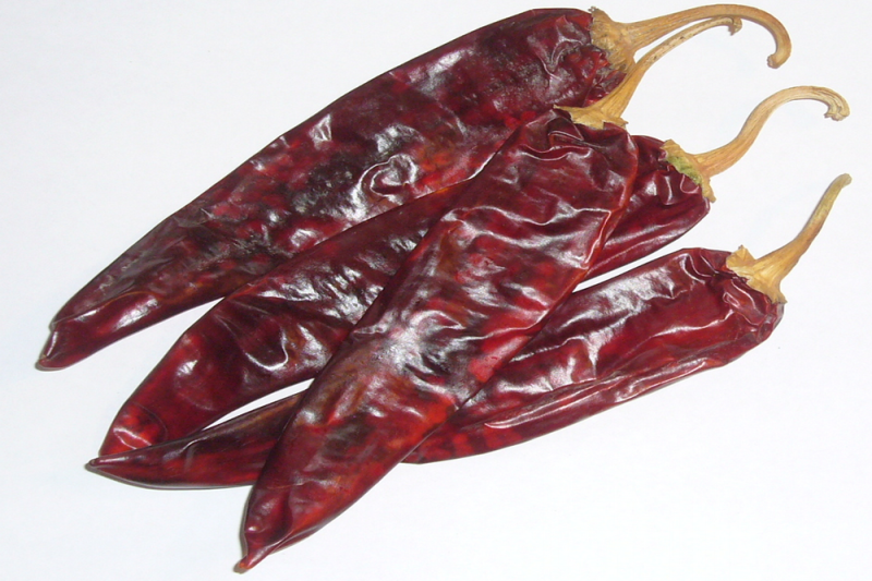 Chili Guajillo (Capsicum Annuum)