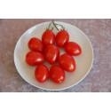 Tomat San Marzano (Lycopersicon)