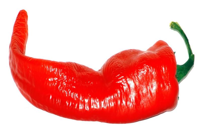 Chili Cayenne Thick (Capsicum Annuum)