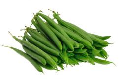 Buskbønne Saxa (Phaseolus...